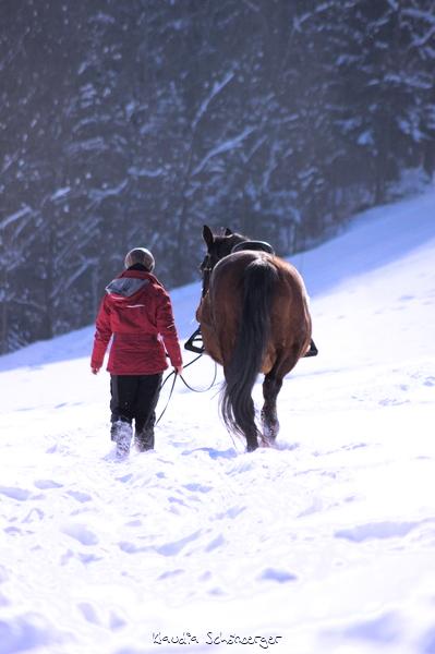 Wir spazieren im Winter durch den Schnee