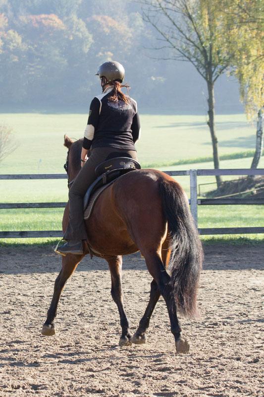 Claudia und Veneroso im Training