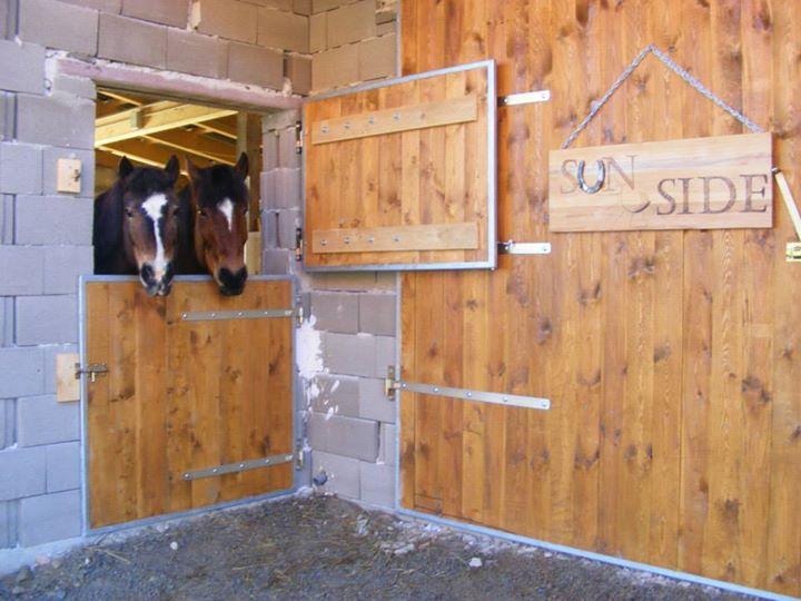 Sindy & Moses im Stall