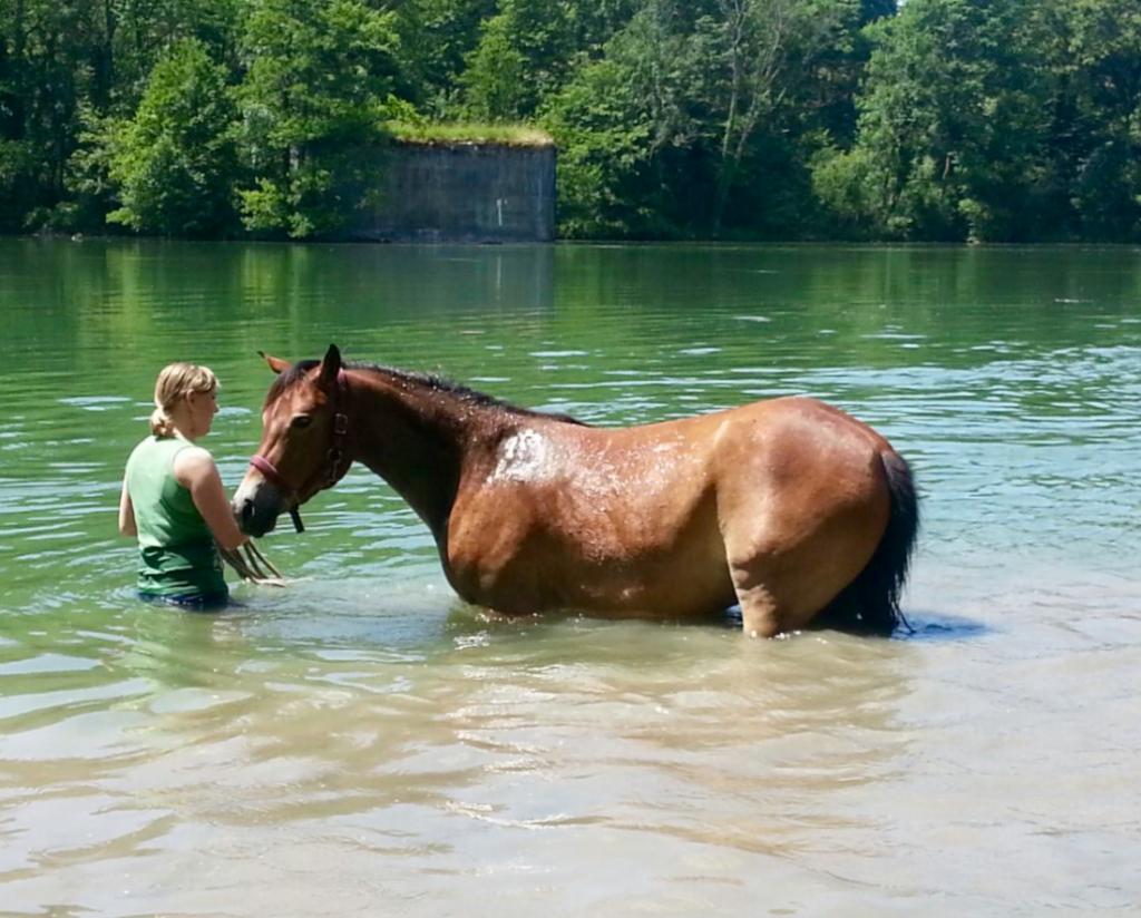 Penny schwimmen