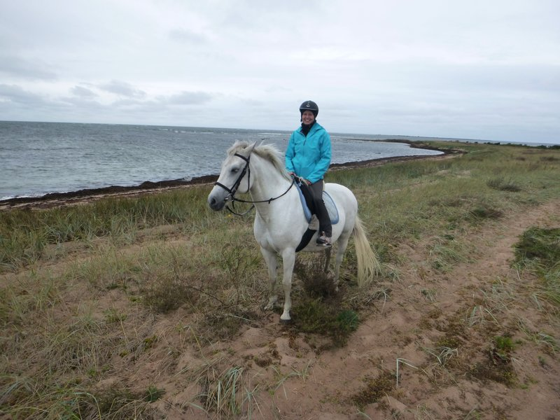Reiten am Strand in Estland