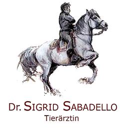 Logo Sabadello - Satteldruckmessung