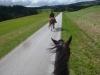 Tagesritt Kirchberg
