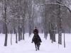 Winterausritt 2013
